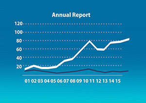Financial Statement in Annual Report
